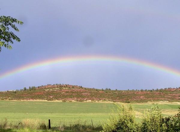 Rainbow 002A