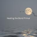 Healing the Primal Bond